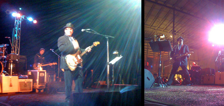 Elvis Costello rocks out on the Academy's west lawn.